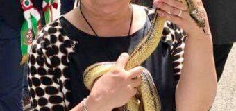 Le serpi di Stefania