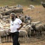 Ma adesso salviamo i pastori